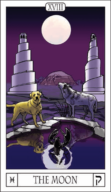 Card Of The Day: The Moon