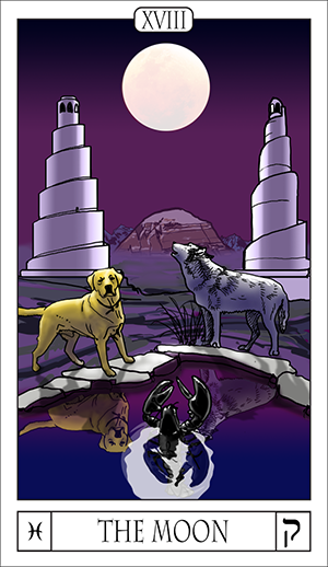 Card Of The Day: The Card For The Day Is The Moon