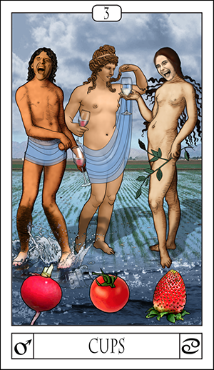 Card Of The Day: 3 Of Cups